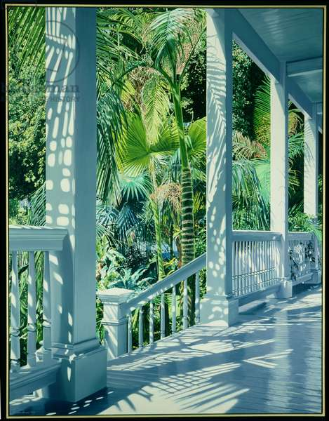 Tropical Shadows, 1988 (oil on canvas)