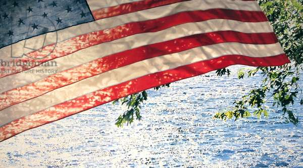 Flag Midday, 2008 (oil on canvas)