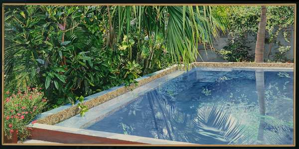 Pool, Tropical Reflection, 1989 (oil on canvas)