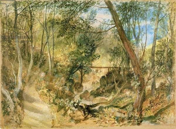 The Woodwalk, Farnley Hall, c.1818 (w/c & gouache)