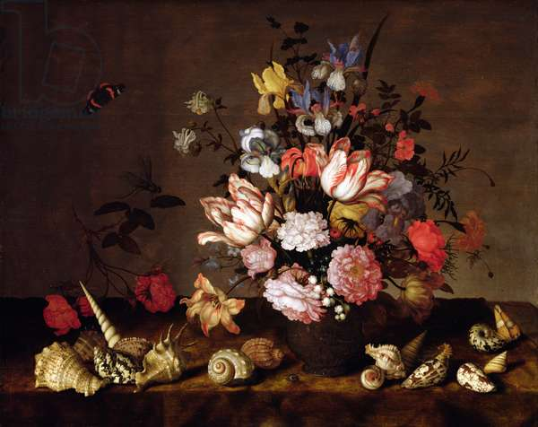 Still life of a vase of flowers with shells (oil on panel)