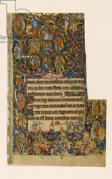 MS 1-2005, fol. 9r: The Tree of Jesse and the Beatus initial border with musician and grotesque combat, from the Macclesfield Psalter, Use of Sarum, East Anglia, c.1330 (vellum)