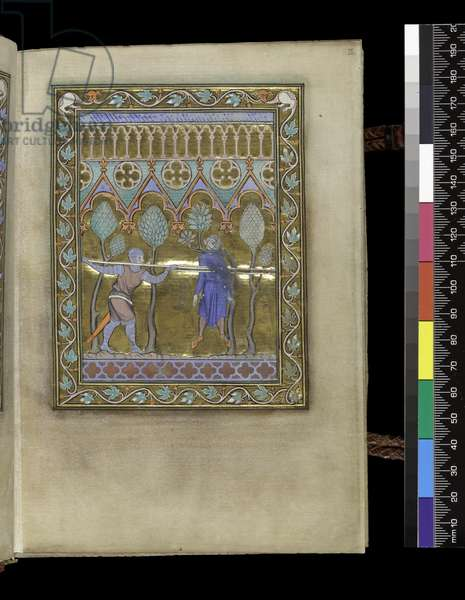MS 300 f.IIr, from the Psalter and Hours of Isabella of France, Paris, c.1265-70 (pen & ink and tempera on parchment)