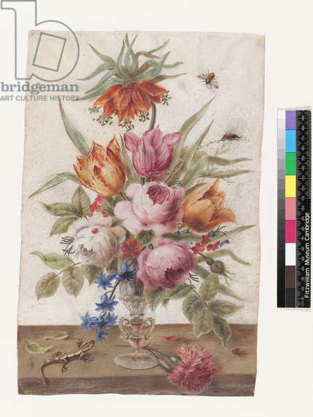 Venetian glass goblet containing flowers with a lizard and insects, 1634 (gouache on vellum)
