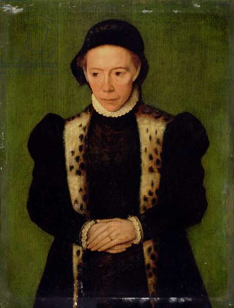 Portrait of a Woman (oil on panel)