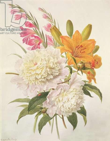 Sprays of Gladioli, Peonies and Lilium Bulbiferum (w/c on paper)