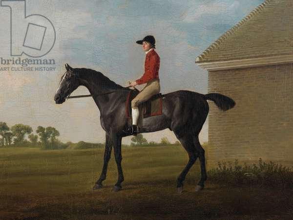 Gimcrack, with John Pratt up, on Newmarket Heath, 1795 (oil on canvas)