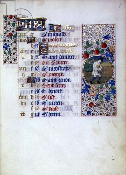 MS.76.f7r Reaping with Serrated Sickle, July Calendar Page from French Horae, c.1490 (vellum)