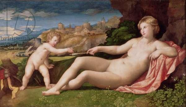 Venus and Cupid, c.1523-24 (oil on canvas)