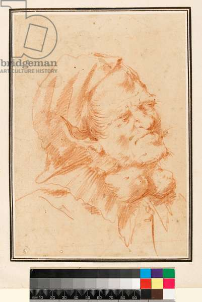 Grotesque Head, Man with Goitre (red chalk)