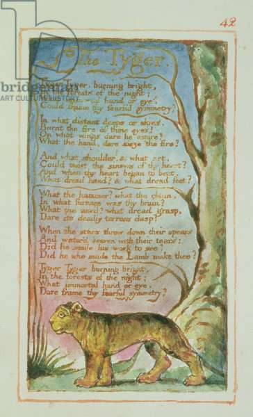 P.125-1950.pt42 The Tyger: plate 42 from Songs of Innocence and of Experience (copy AA) c.1815-26 (etching, ink and w/c)