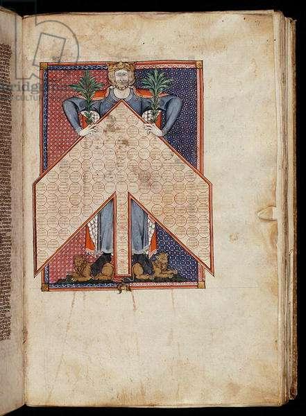 Ms. 262, f.71r: Tree of Consanguinity from Gratian's Decretum, c.1300 (vellum)