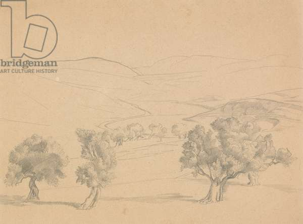 Palestinian Landscape, 1917 (graphite on paper)