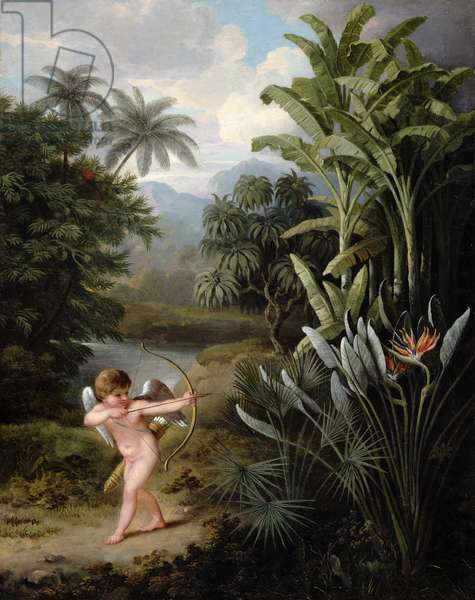Cupid inspiring the Plants with Love, painted for Robert Thornton's Book `New Illustration of the Sexual System of Linnaeus', c.1797