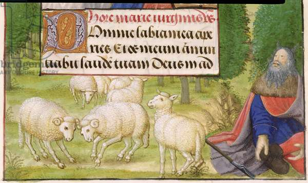MS 1058-1975 f.50r Moses sits amongst his sheep, from a Book of Hours, Flemish, c.1500