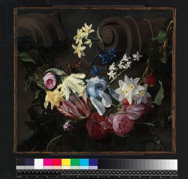 Festoon of flowers, before 1661 (oil on canvas)