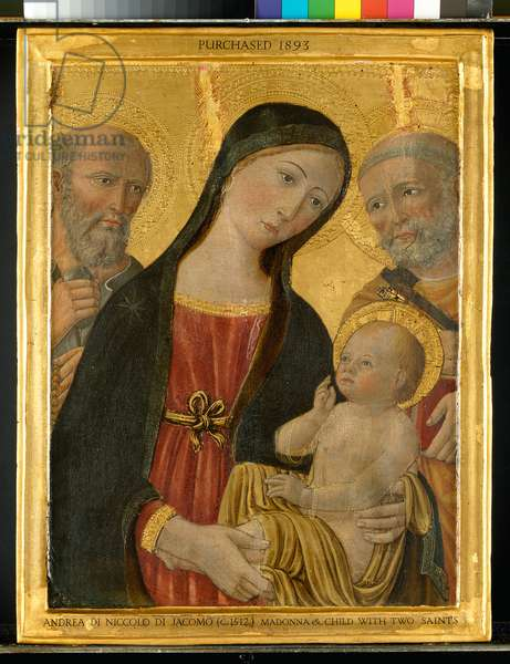 Virgin and Child between St. Jerome and St. Peter, c.1500 (tempera with gold on panel)