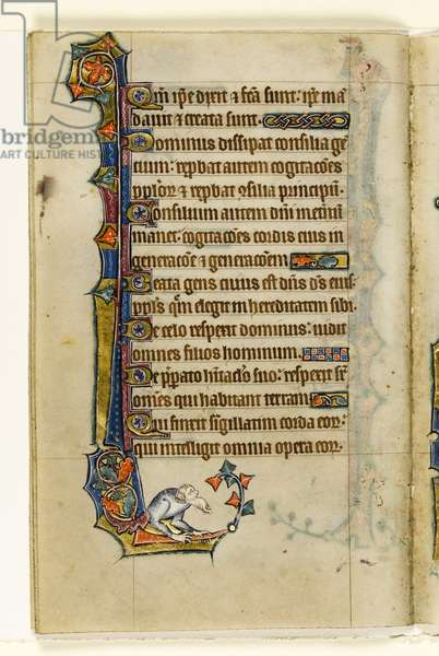 MS 1-2005, fol. 47v: A grotesque, marginal decoration from the Macclesfield Psalter, Use of Sarum, East Anglia, c.1330 (vellum)