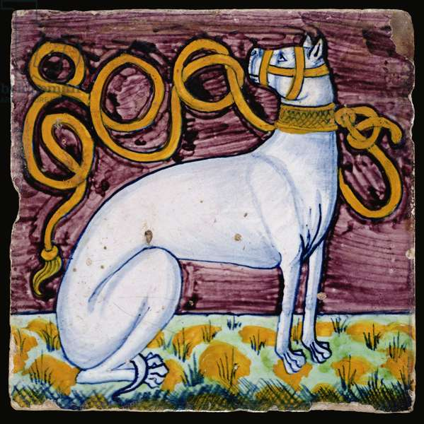 C.61-1927 Floor tile decorated with the Gonzaga impresa, a white hound, probably from the workshop of Antonio dei Fedeli, c.1492-94 (maiolica)