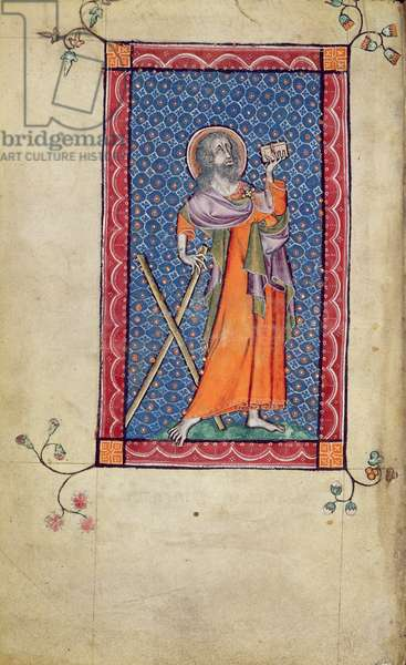 Ms 1-2005, f.1v: St. Andrew, miniature from the Macclesfield Psalter, Use of Sarum, East Anglia, c.1330 (vellum)