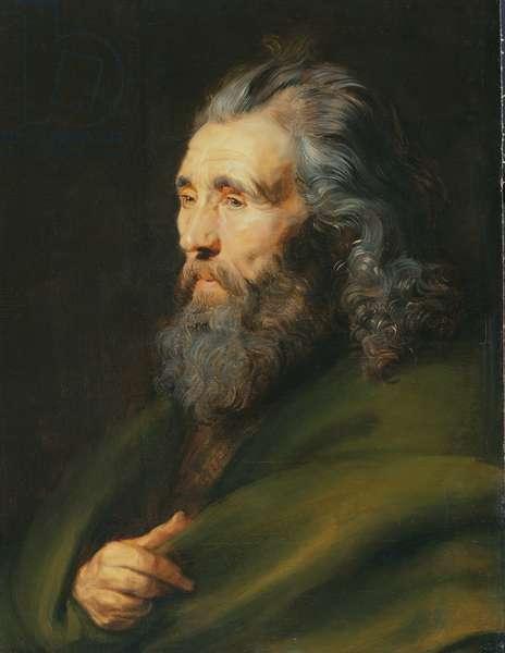 Head Study of a Bearded Man, c.1617 (oil on panel)