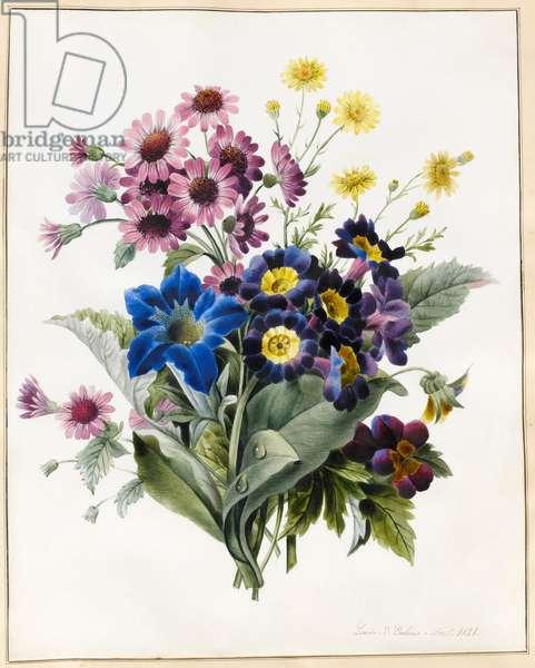Mixed Flowers, Aster sp., Auricula, Ragwort, Viola, Campanula, Gentiana Acaulis, 1828 (w/c with some bodycolour on vellum)