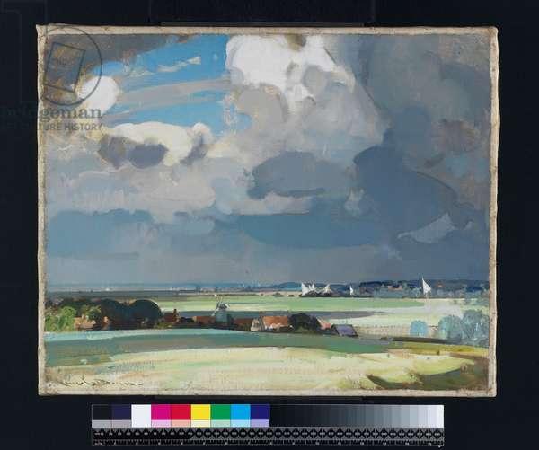 The Yacht Race (oil on canvas)