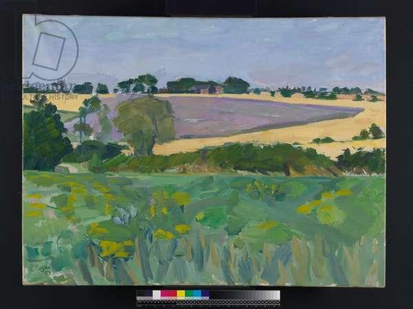 Clover Field, Somerton, Suffolk, 1959 (oil on canvas)