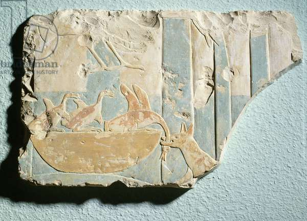 Relief depicting a raid by a dog-like animal on a bird's nest, from the funerary temple of King Montuhotep II, Middle Kingdom (painted limestone)