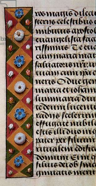Ms. 1058-1975, f.16r: detail of a floral border from a Book of Hours, c.1500 (vellum)