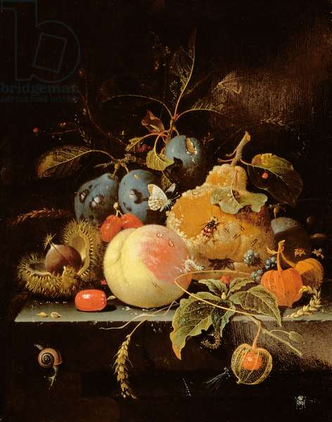 Still Life of Fruit and Nuts on a Stone Ledge (oil on panel)