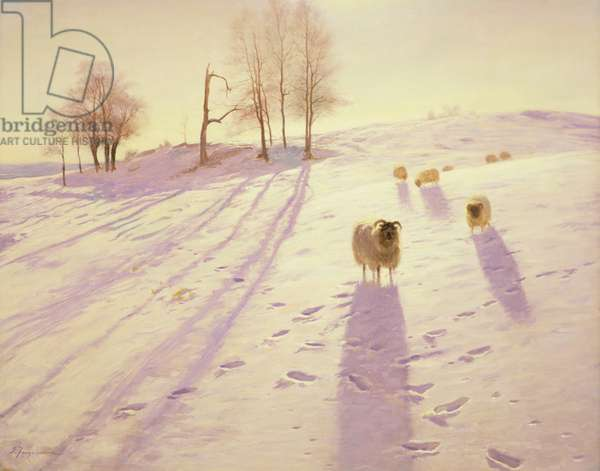 When Snow the Pasture Sheets (oil on canvas)