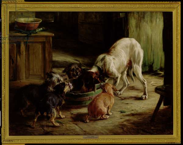 The Dogs' Dinner, 1884 (oil on canvas)