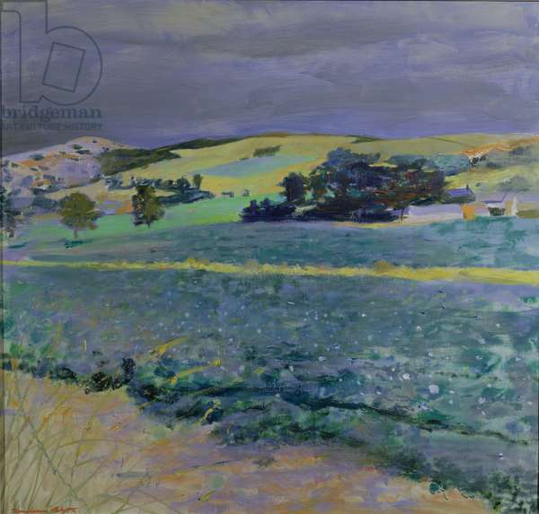 Landscape near Cupar, Fife, 1969 (oil on canvas)