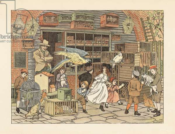 Victorian children playing with parrots and cockatoos at the bird fancier's shop or pet shop. Chromolithograph after an illustration by Francis Donkin Bedford from Edward Verrall Lucas' The Book of Shops, 1899.