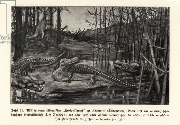 View of a crocodile swamp, south Germany, Triassic period.