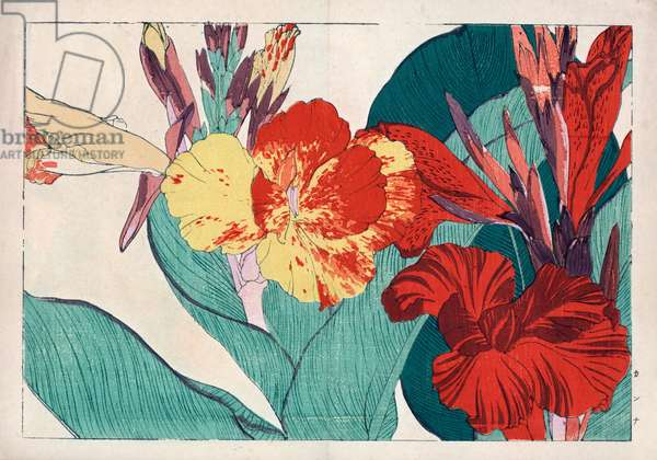"""Cornflora or ballisier. Canna lily, Canna indica. Handcoloured woodblock print from Konan Tanigami's """""""" Seiyou Sokazufu"""""""" (Pictorial Album of Western Plants and Flowers: Summer), Unsodo, Kyoto, 1917. Tanigami (1879-1928) depicted 125 varieties of garden plants through the four seasons."""