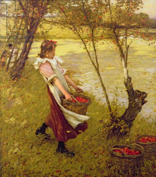 In the Orchard, Haylands, Graffham (oil on canvas)