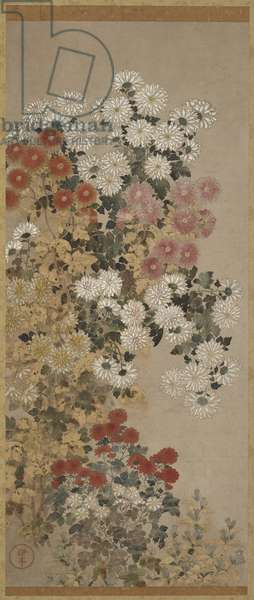 Chrysanthemums, Hanging scroll (mounted on panel), 1600-30 (colour on paper)