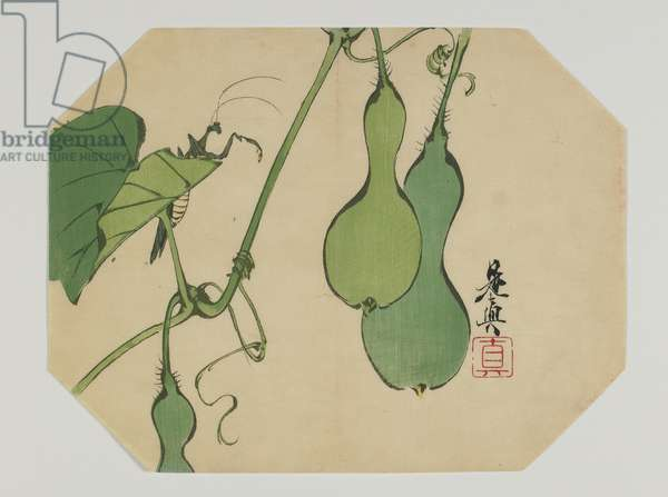 Print for an uchiwa, gourds on a vine with a mantis, Meiji era, late 19th century (colour woodblock print)