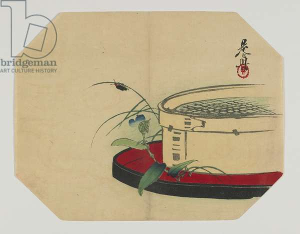 Print for an uchiwa; firefly on flowering plant, with bamboo sieve, Meiji era, late 19th century (colour woodblock print)