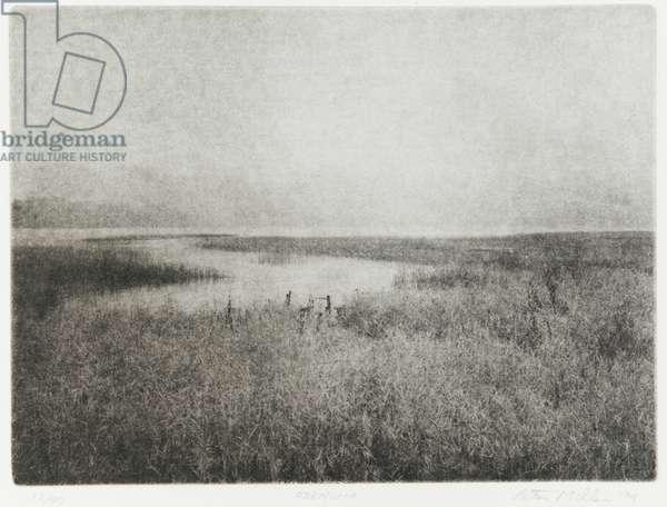 Ozenuma, 1994 (photogravure, ink on paper)