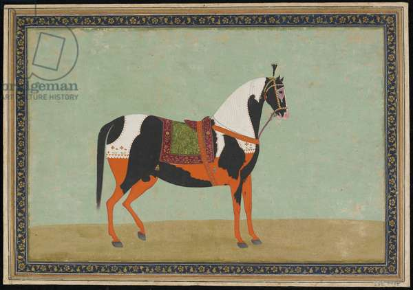 A Horse, Album folio, 19th century (opaque watercolour and gold on paper)