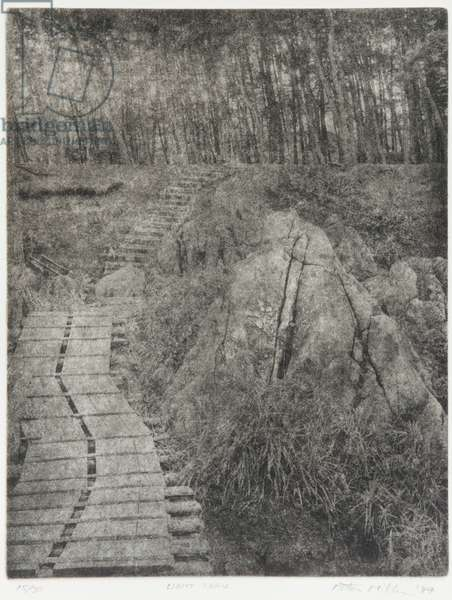 Light Trail, 1994 (photogravure, ink on paper)
