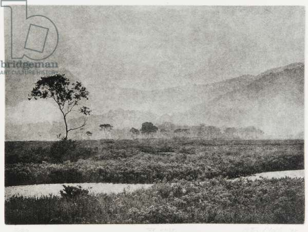 Oze Mist, 1993 (photogravure, ink on paper)