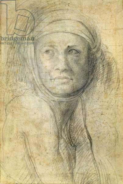 Head of a Woman (pencil on paper)