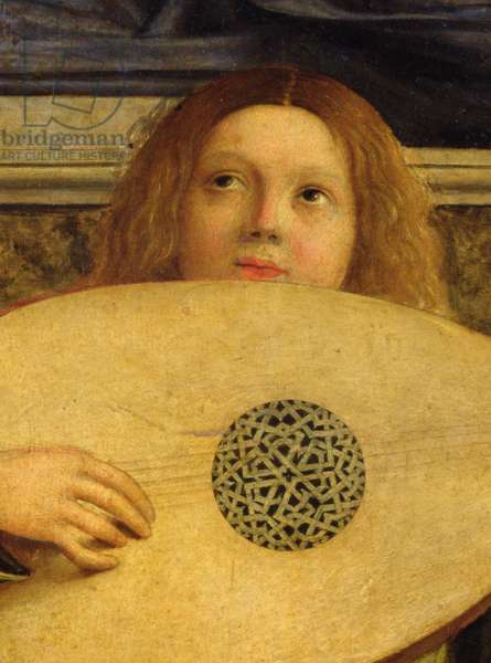 The San Giobbe Altarpiece, detail of angel playing music, c.1487 (oil on panel) (detail of 55433)