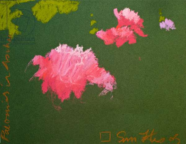 Peonies in Aschau (pastel on paper)
