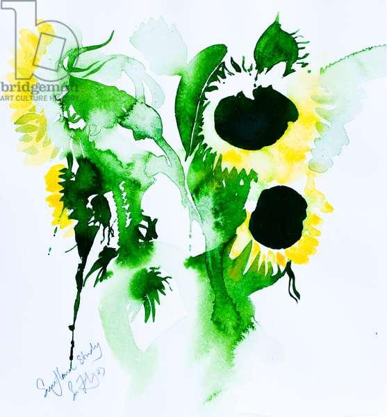 sunflower study 35x28cm watercolour
