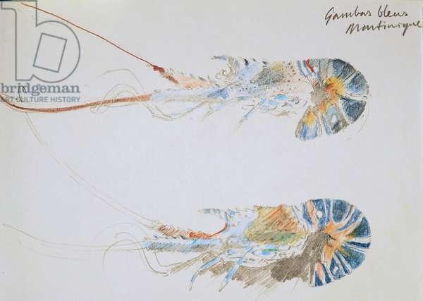 Gambas bleus 2002 pencil and pastel